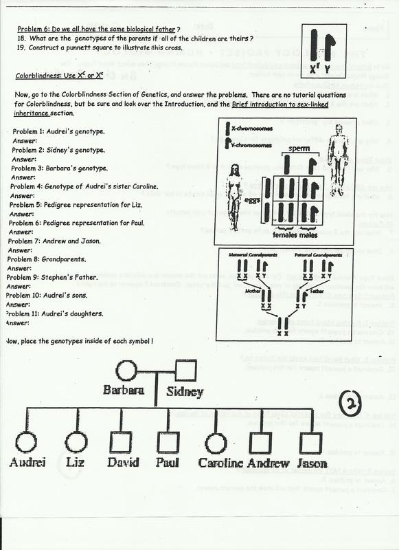 Genetic Pedigree Worksheet - Page 7 - fallcreekonline.org